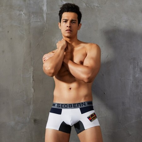 Boxer homme taille basse (YP)